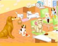 Dog room decoration online